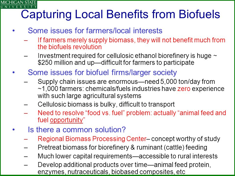Capturing Local Benefits from Biofuels