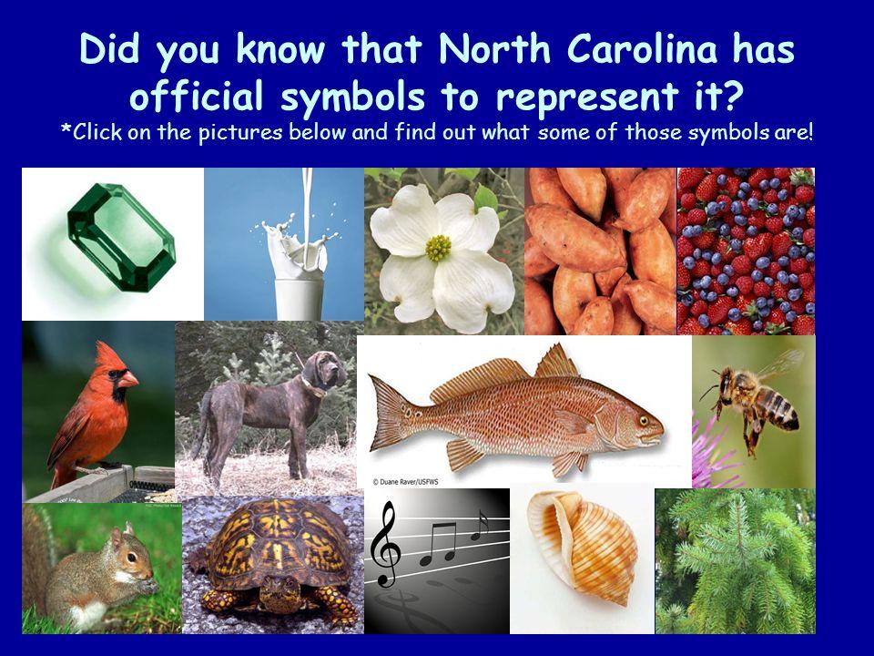 Exploring North Carolina Ppt Video Online Download