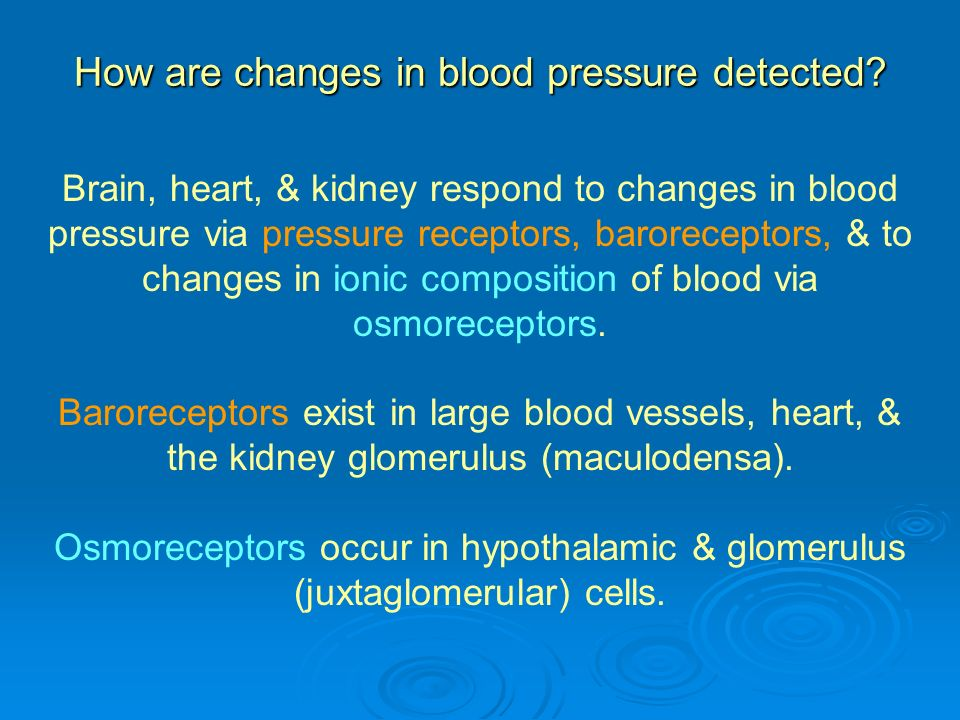 How are changes in blood pressure detected