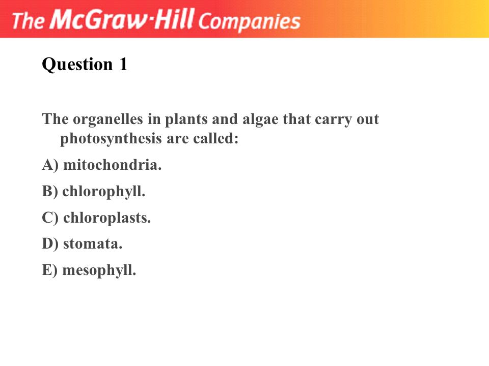 Question 1 The Organelles In Plants And Algae That Carry Out Photosynthesis Are Called A: Chapter 8 Photosynthesis Worksheet Answers At Alzheimers-prions.com