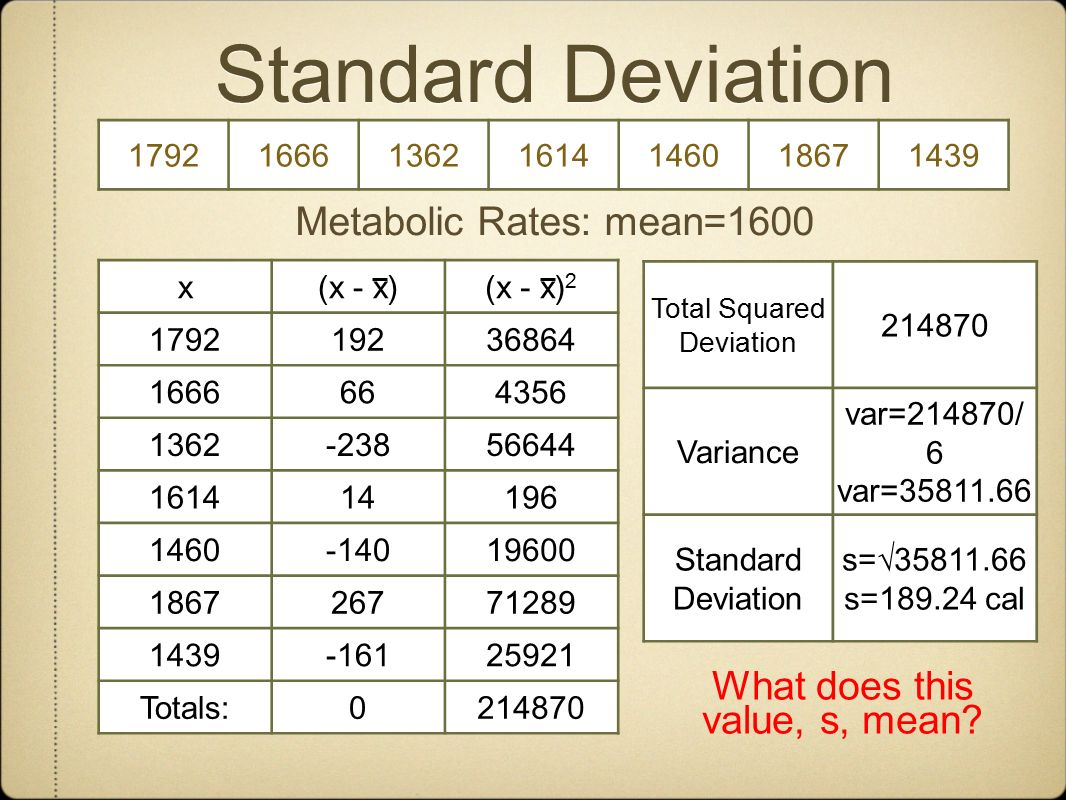 Standard Deviation Metabolic Rates: mean=1600