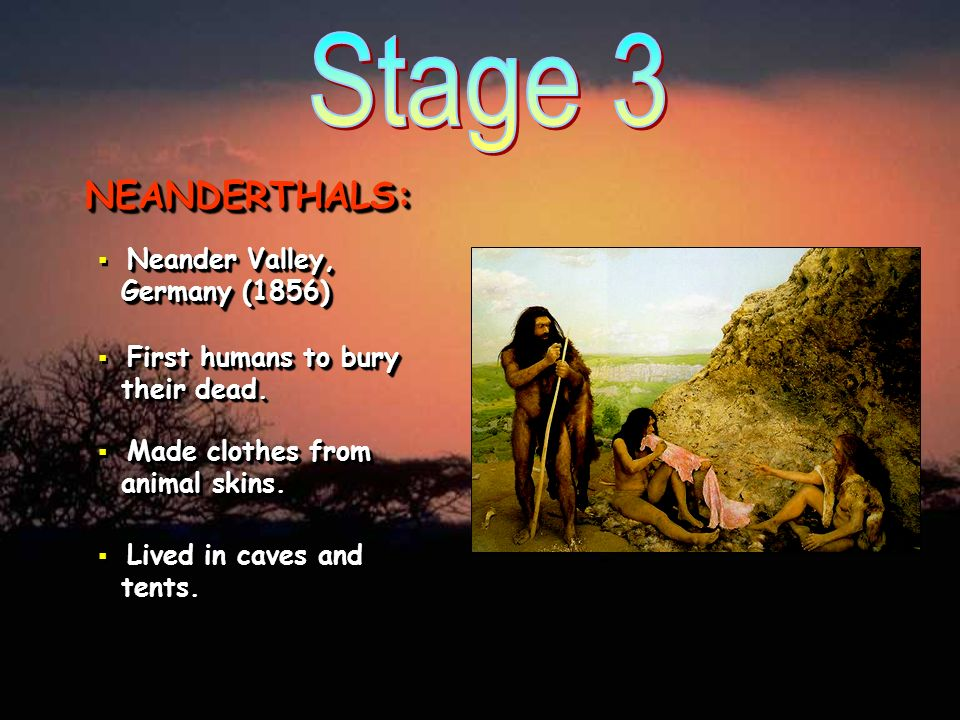 Stage 3 NEANDERTHALS: Neander Valley, Germany (1856)