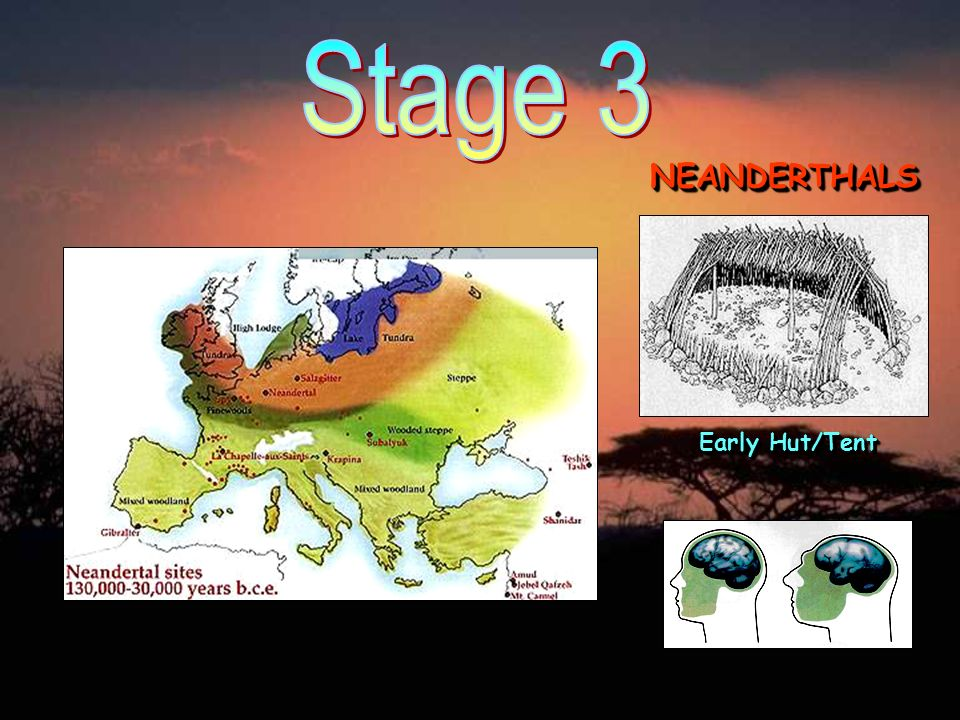 Stage 3 NEANDERTHALS Early Hut/Tent