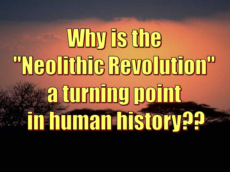 Why is the Neolithic Revolution a turning point in human history