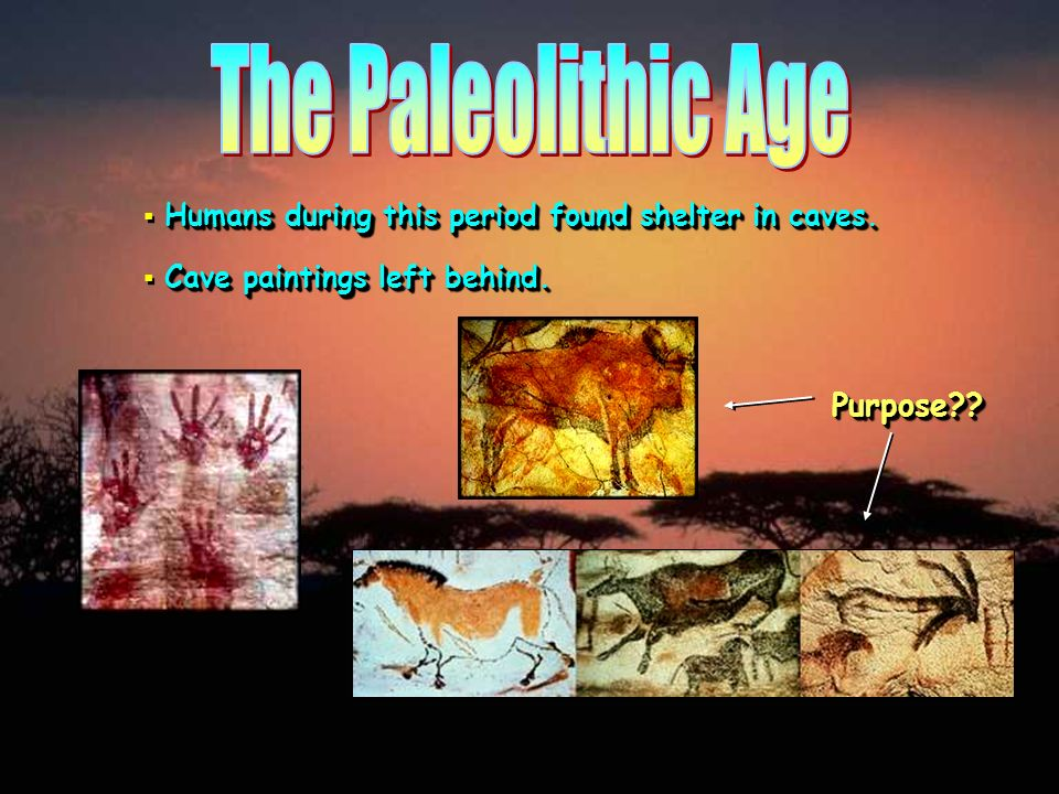 The Paleolithic Age Purpose