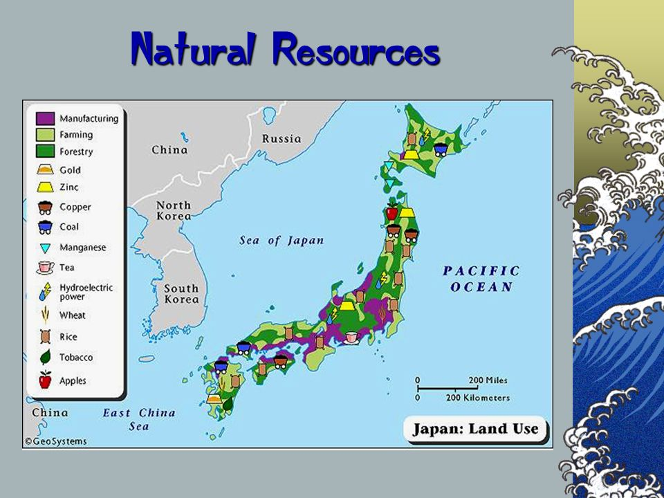 Natural Resources The next couple of slides are a comparison of the countries that we will be visiting.