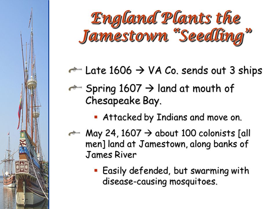 England Plants the Jamestown Seedling