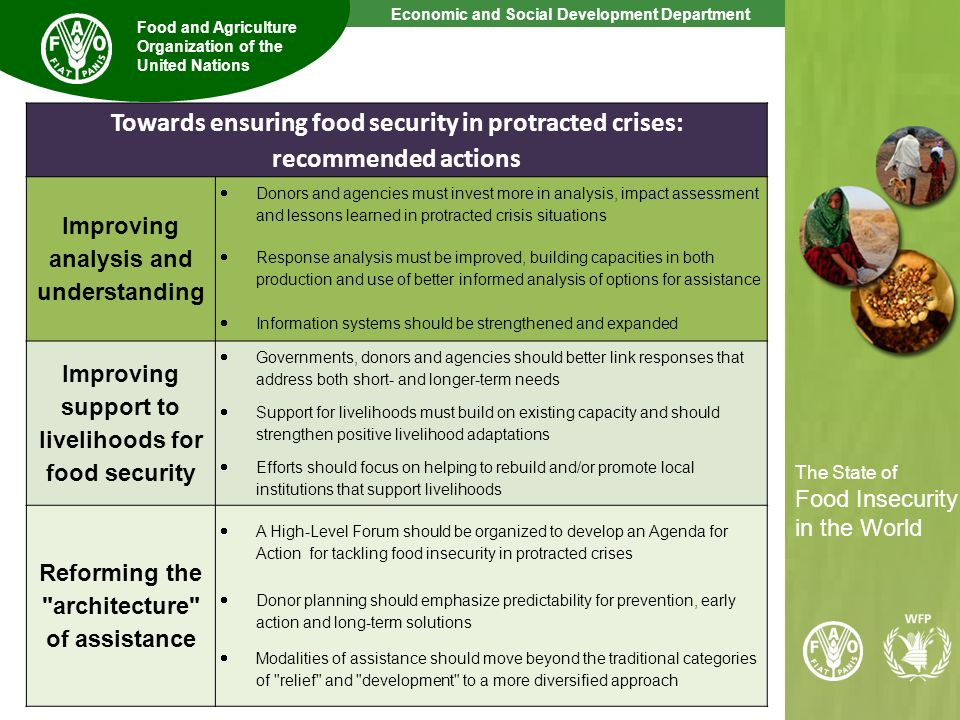 Towards ensuring food security in protracted crises: recommended actions