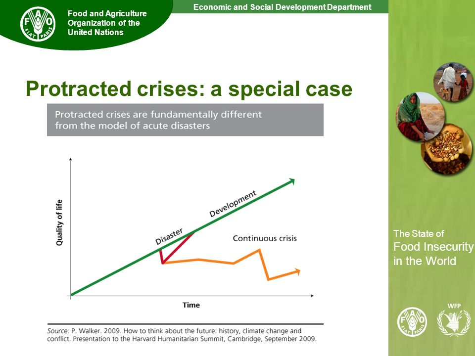 Protracted crises: a special case