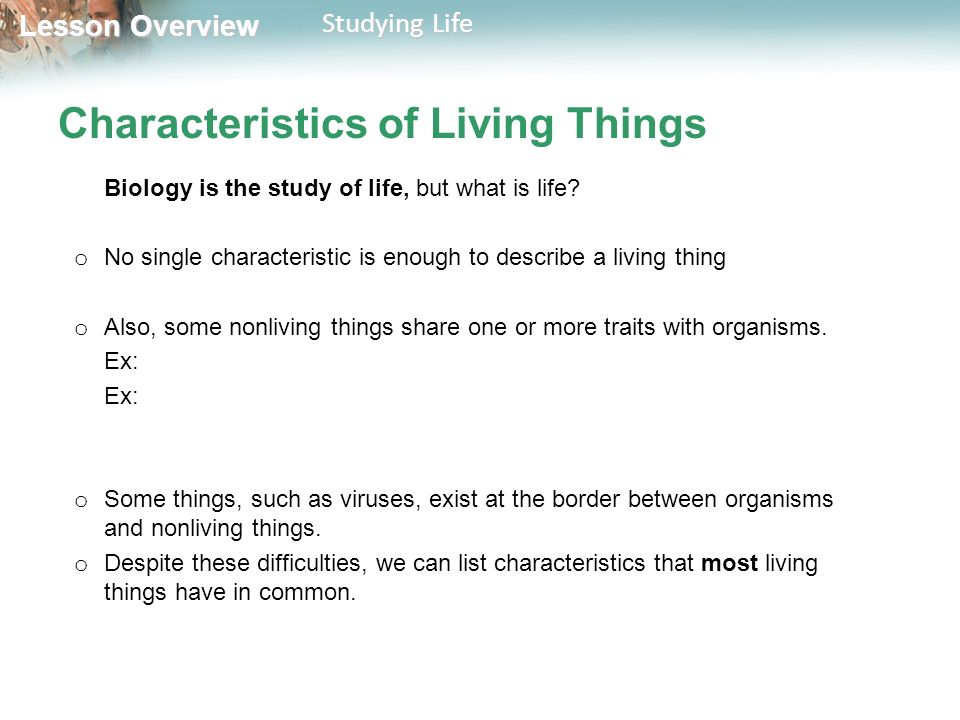 3 Characteristics Of Living Things
