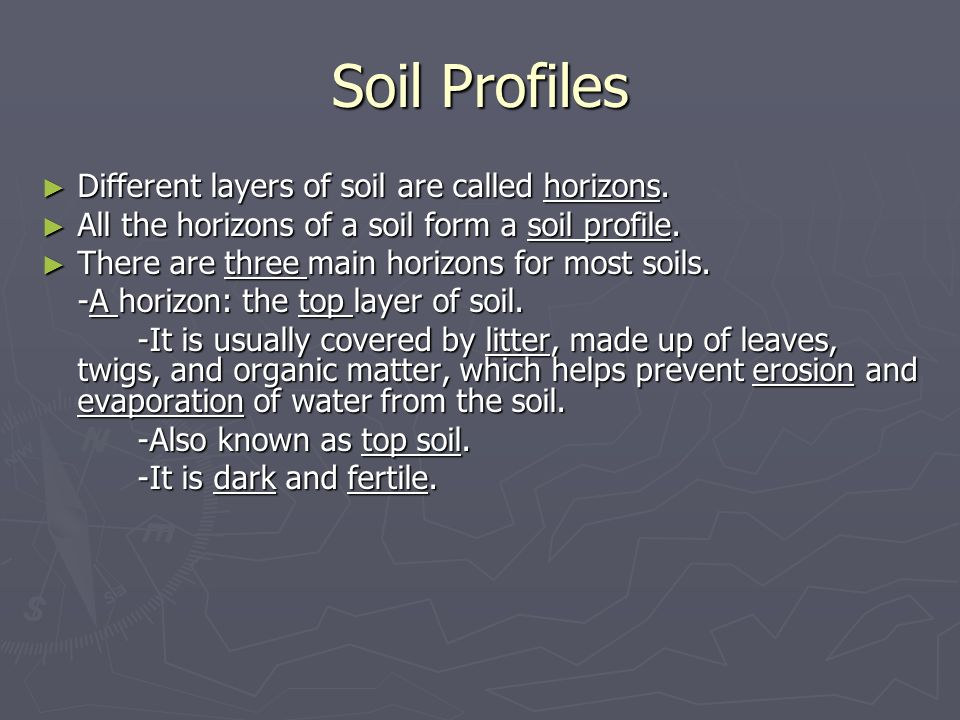 Soil Profiles Different layers of soil are called horizons.