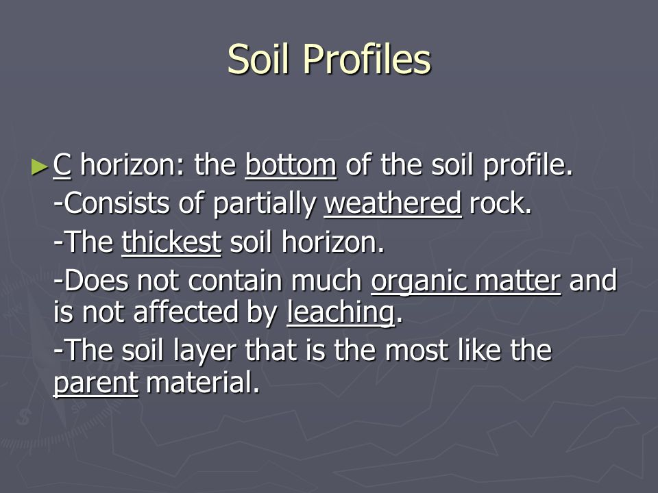 Soil Profiles C horizon: the bottom of the soil profile.