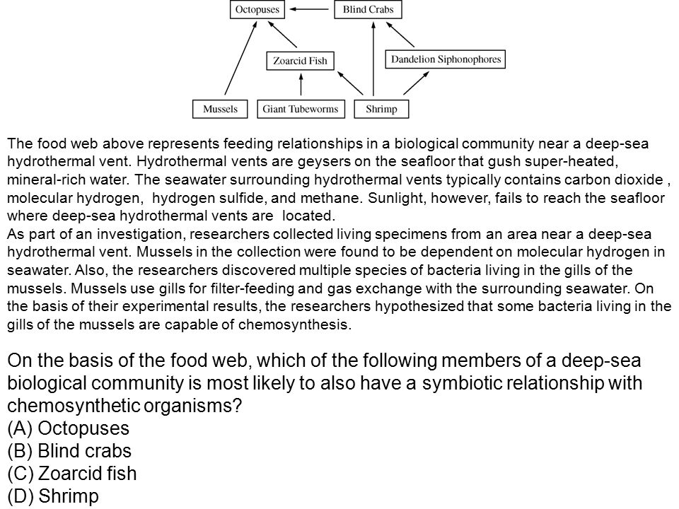 Ecology Study Of The Interactions Of Organisms With Other Ppt Download