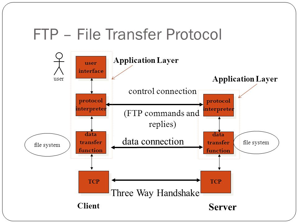 FTP (File Transfer Protocol) & Telnet - ppt video online