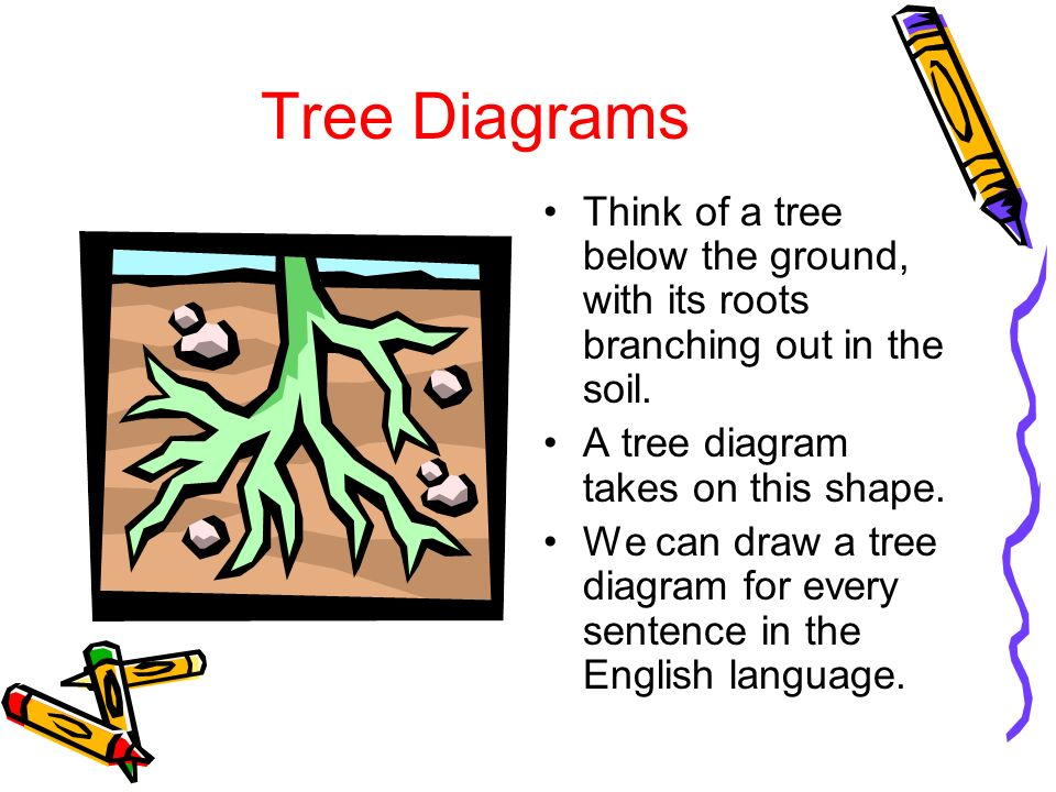 What is a sentence by jaye lynn trapp ppt video online download tree diagrams think of a tree below the ground with its roots branching out in ccuart Image collections