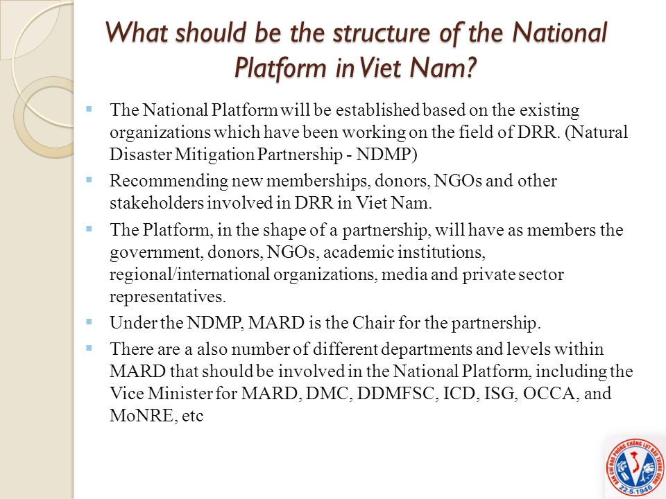 What should be the structure of the National Platform in Viet Nam