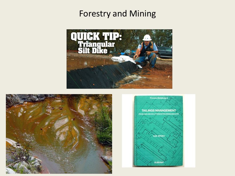 Forestry and Mining