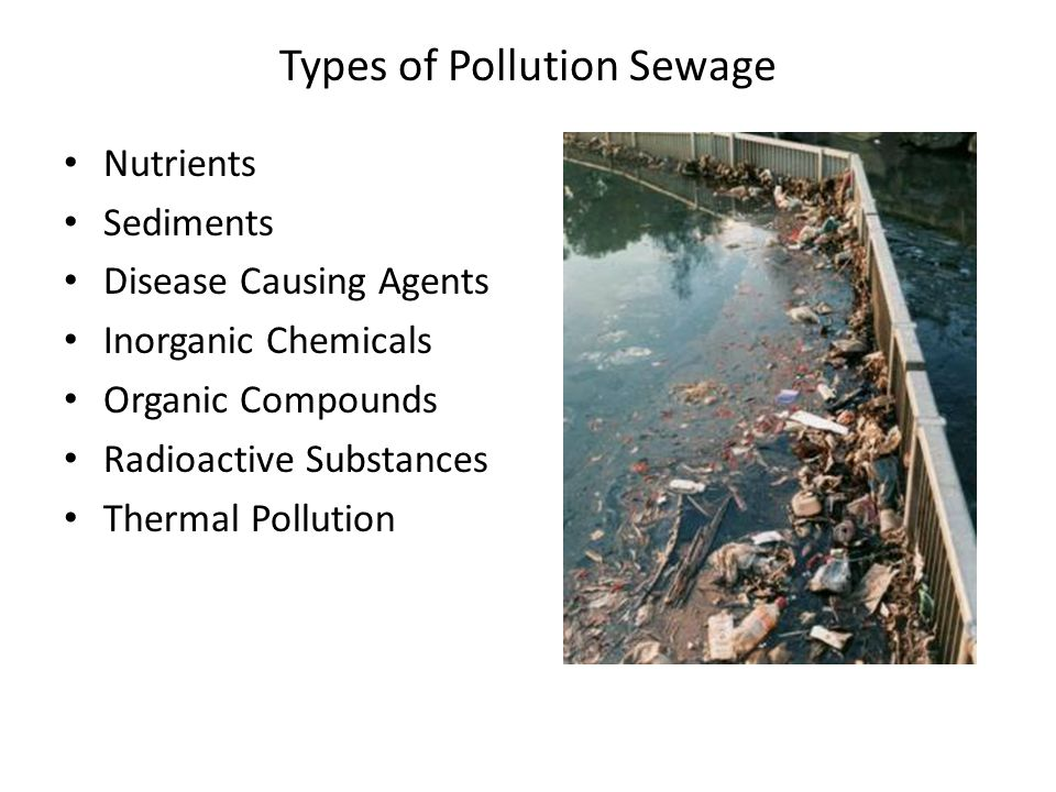 Types of Pollution Sewage