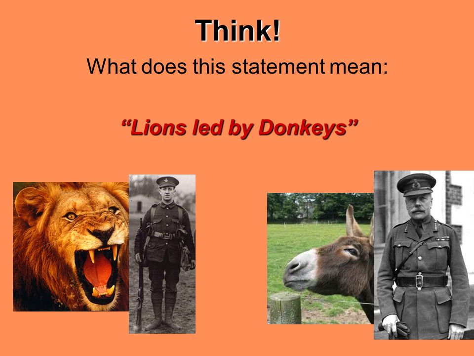'lions led by donkeys' how accurate They are lions led by donkeys the phrase lions led by donkeys was used as a title for a book published in 1927, by captain p a thompson the subtitle of this book was showing how victory in the great war was achieved by those who made the fewest mistakes alan clark based the title of his book the donkeys (1961) on the phrase.