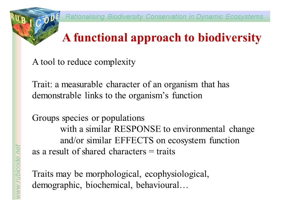 A functional approach to biodiversity