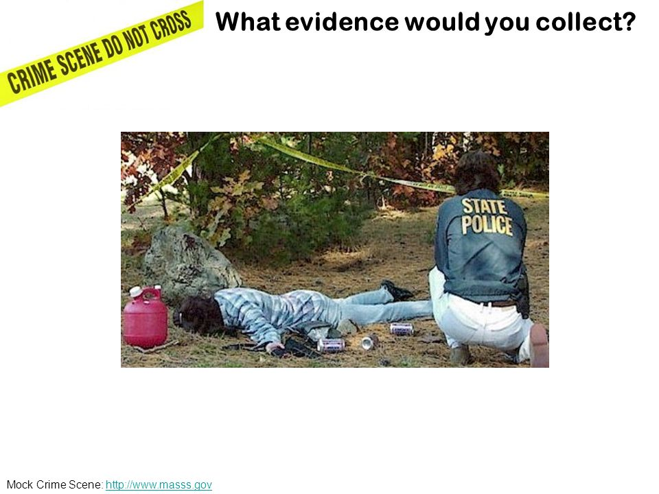 What evidence would you collect
