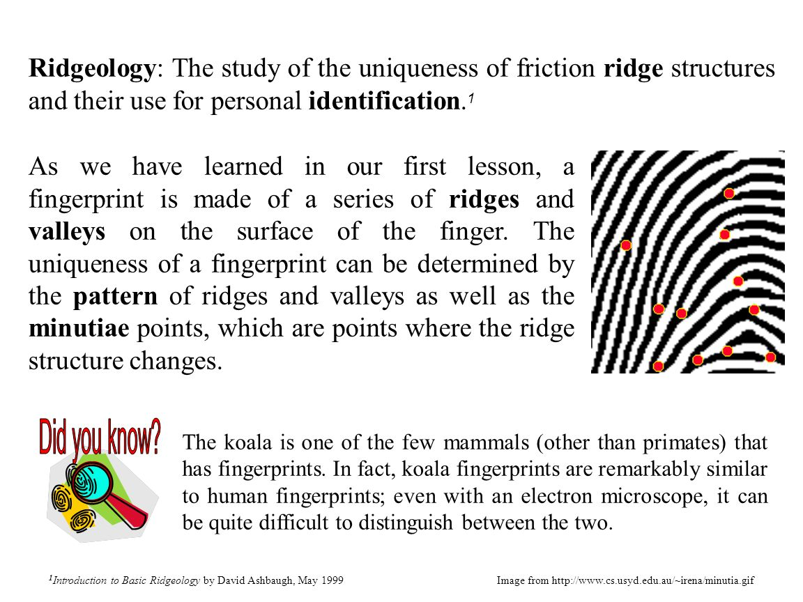 Ridgeology: The study of the uniqueness of friction ridge structures and their use for personal identification.1