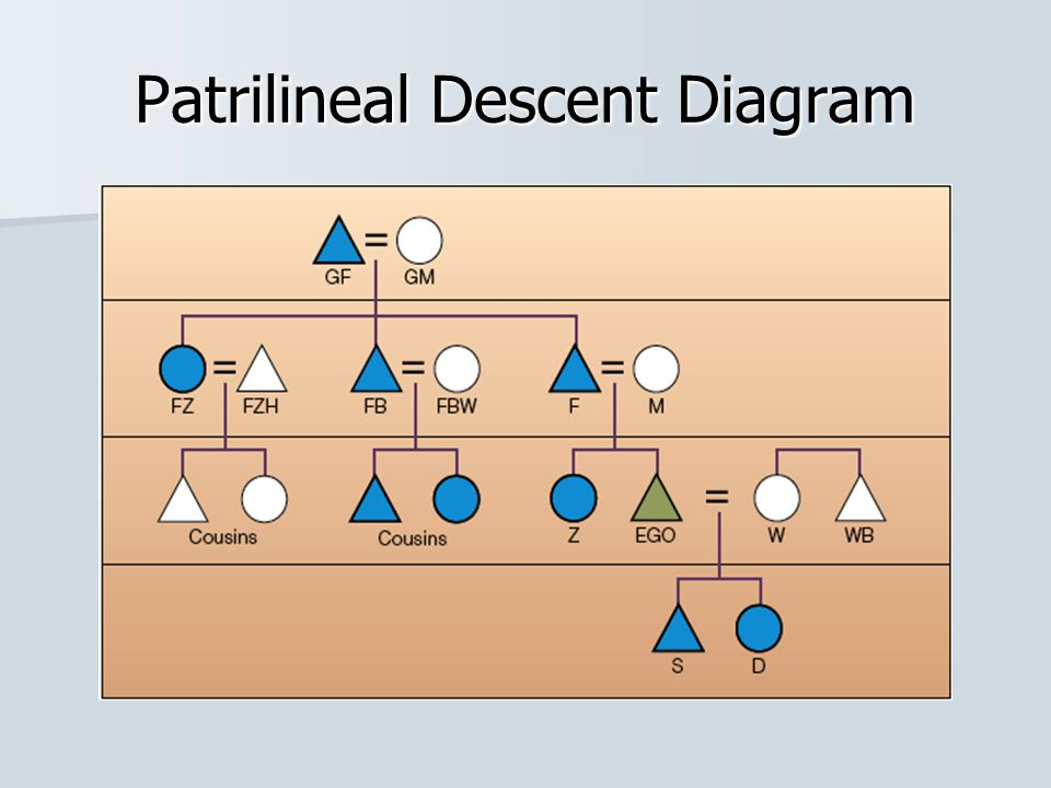 Patrilineal Descent Kinship Diagram Online Schematic Diagram