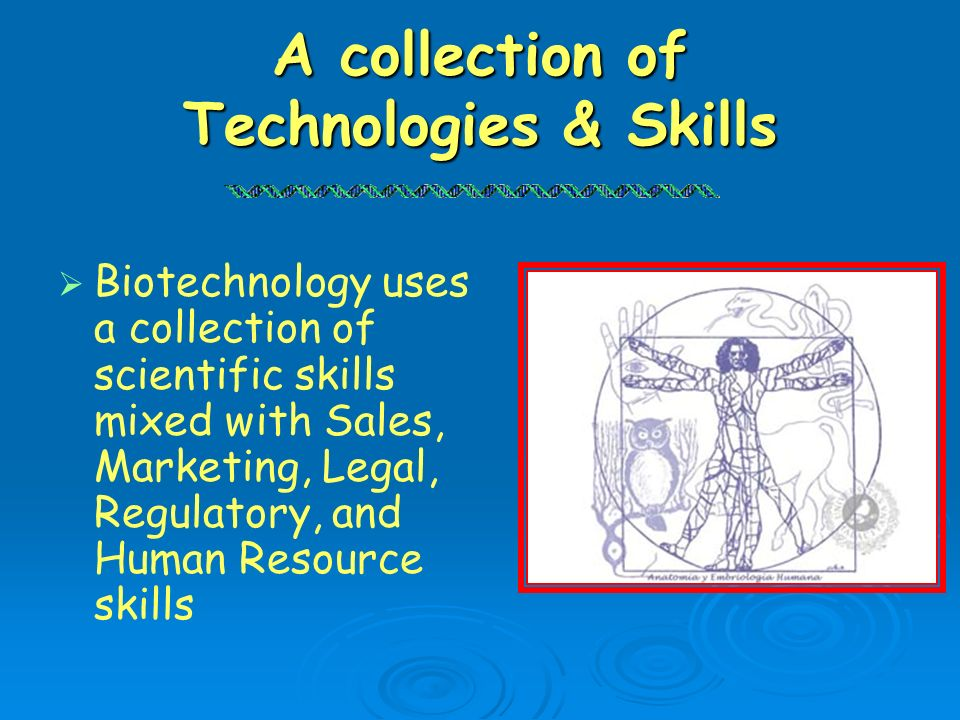 A collection of Technologies & Skills