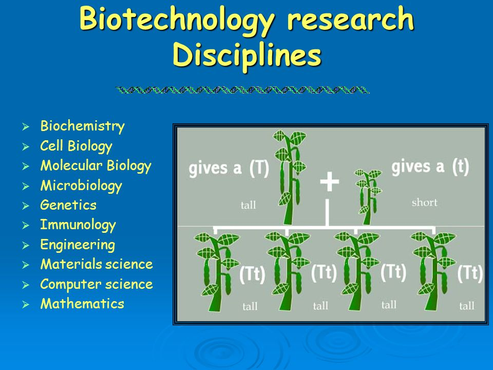 Biotechnology research Disciplines