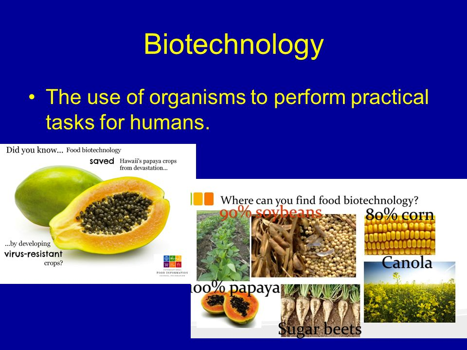 Biotechnology The use of organisms to perform practical tasks for humans.