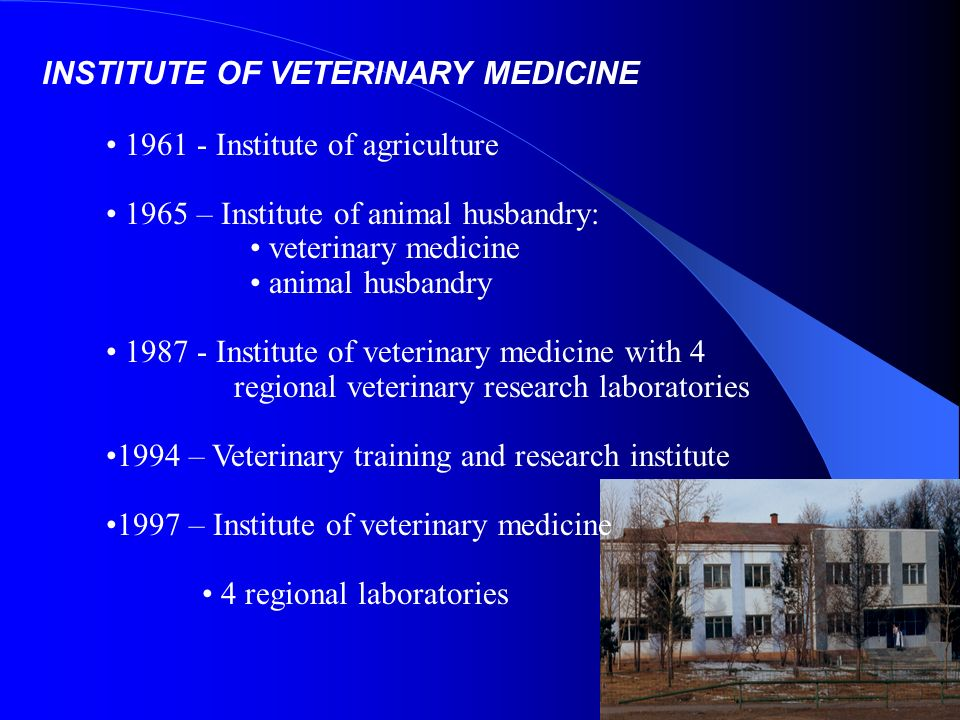 INSTITUTE OF VETERINARY MEDICINE