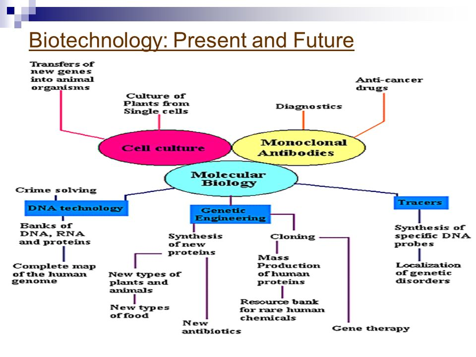 Biotechnology: Present and Future