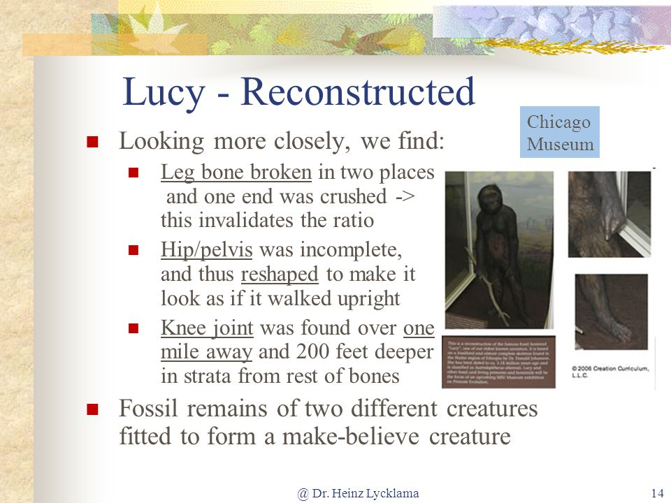 Lucy - Reconstructed Looking more closely, we find: