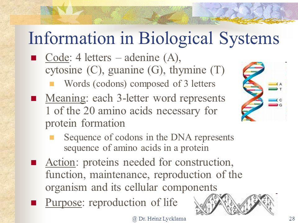 Information in Biological Systems