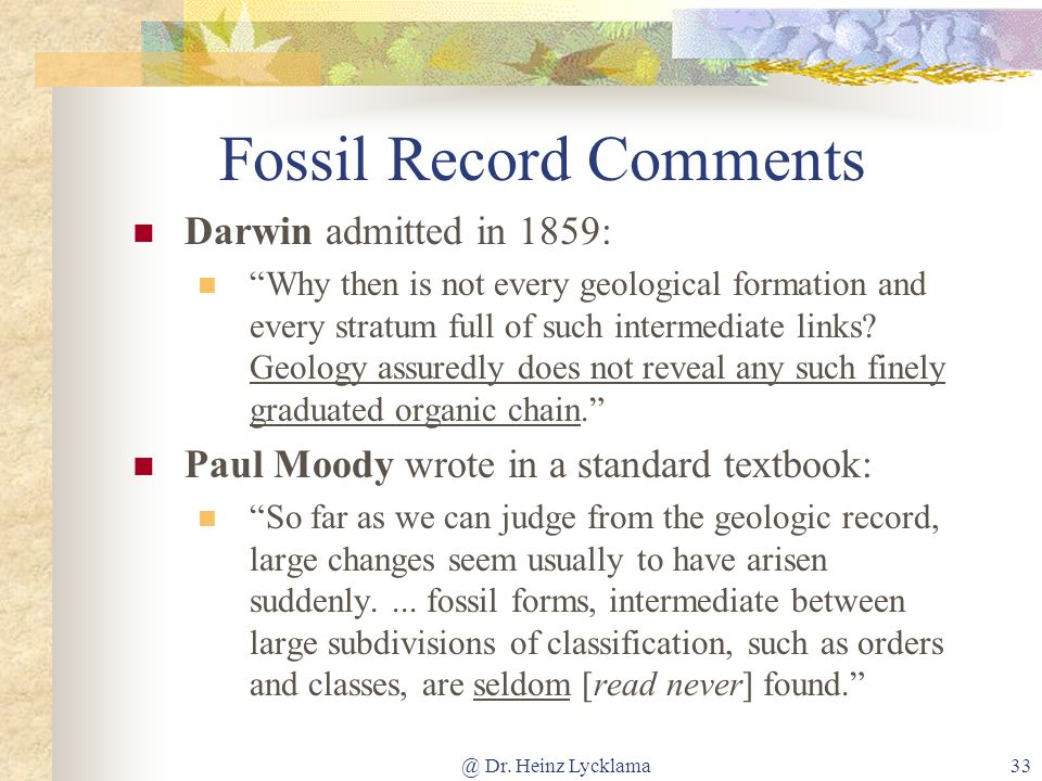 Fossil Record Comments