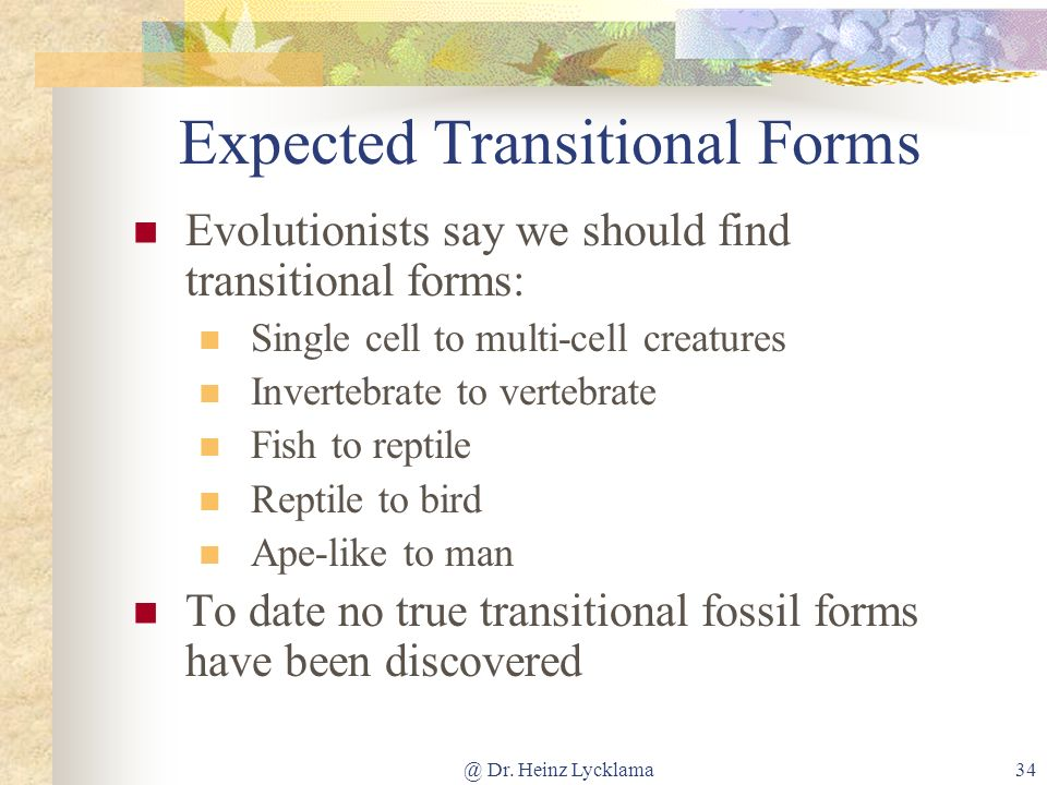 Expected Transitional Forms