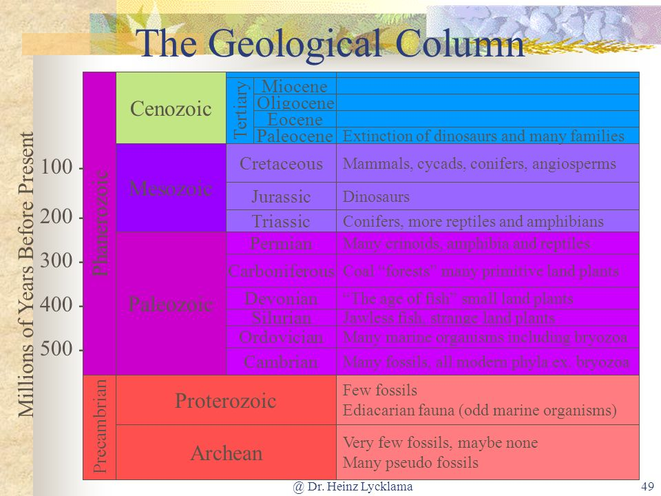 The Geological Column Cenozoic 100 - Mesozoic Phanerozoic