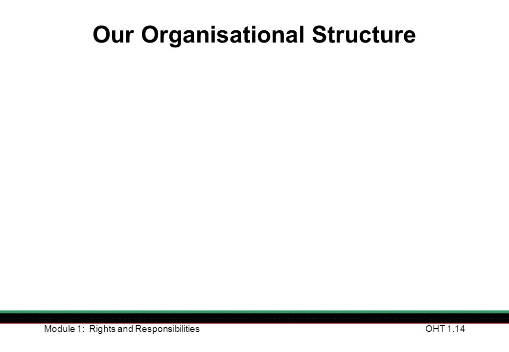 Our Organisational Structure