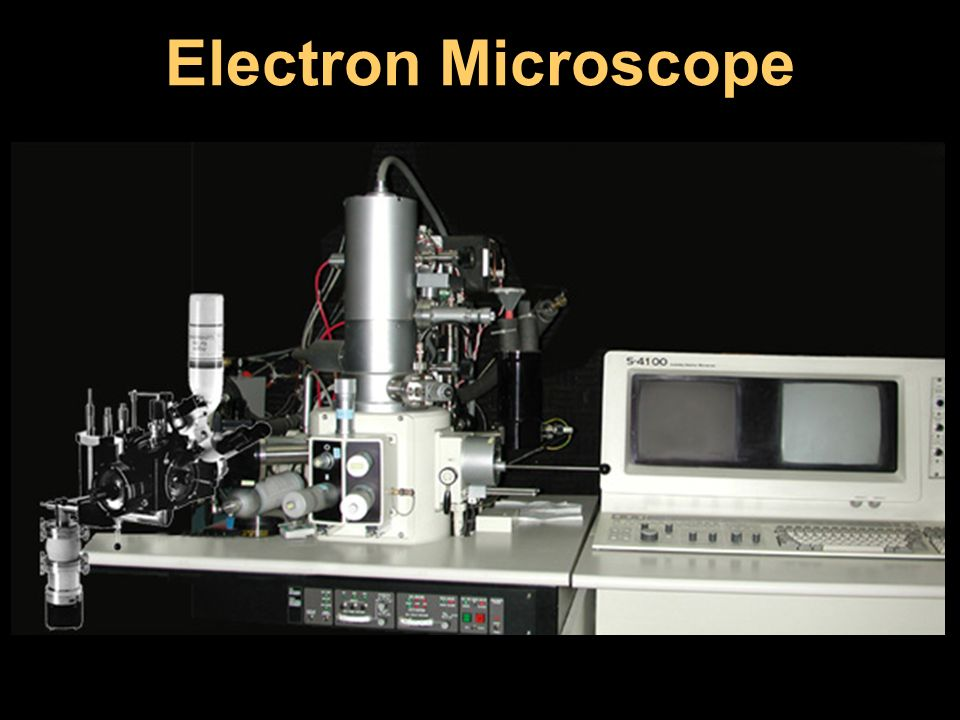 Electron Microscope Images from: