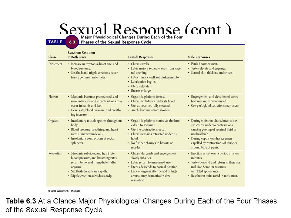 Human sexual response cycle ppt