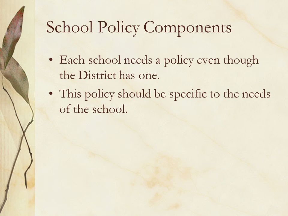 School Policy Components