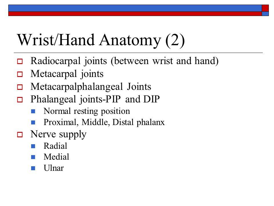 Wrist/Hand Anatomy Carpals-8 Metacarpals-5 Phalanges - 5 Scaphoid ...