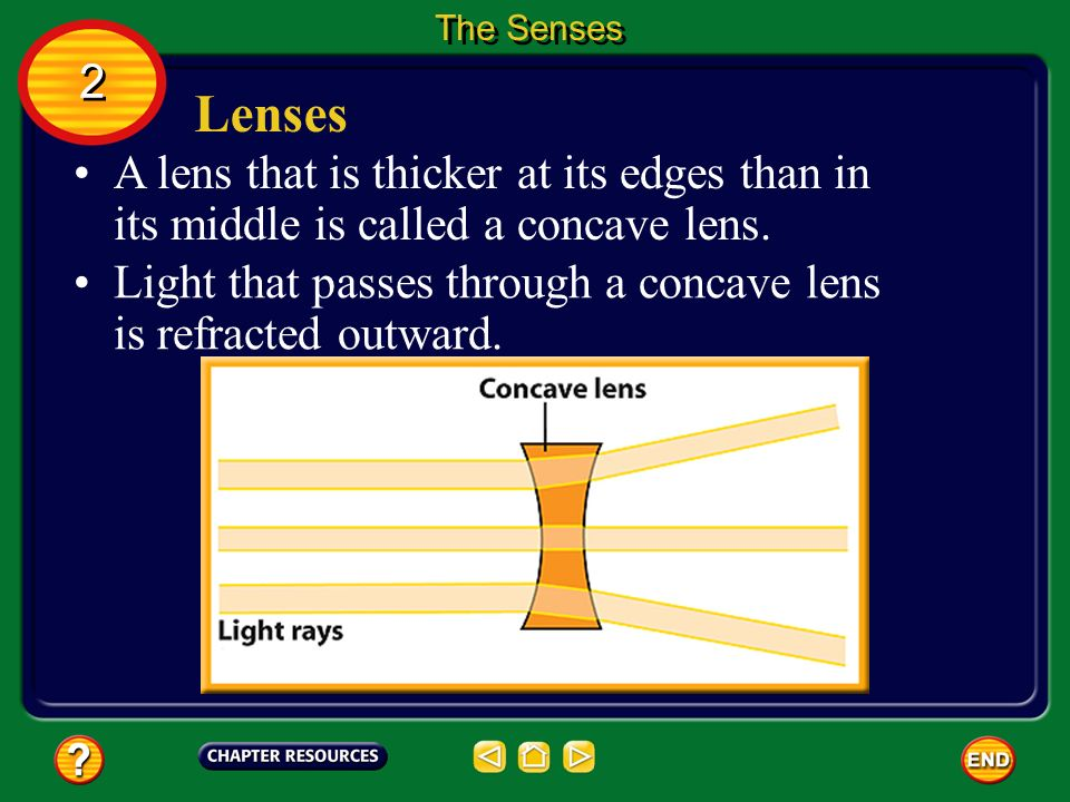 The Senses 2. Lenses. A lens that is thicker at its edges than in its middle is called a concave lens.
