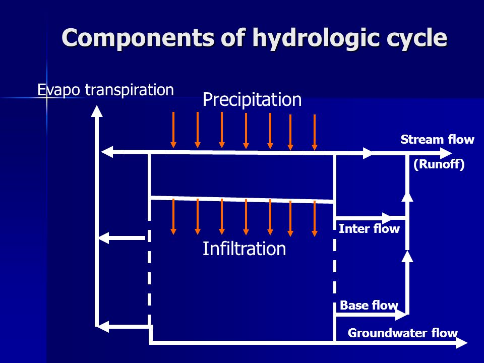 Components of hydrologic cycle