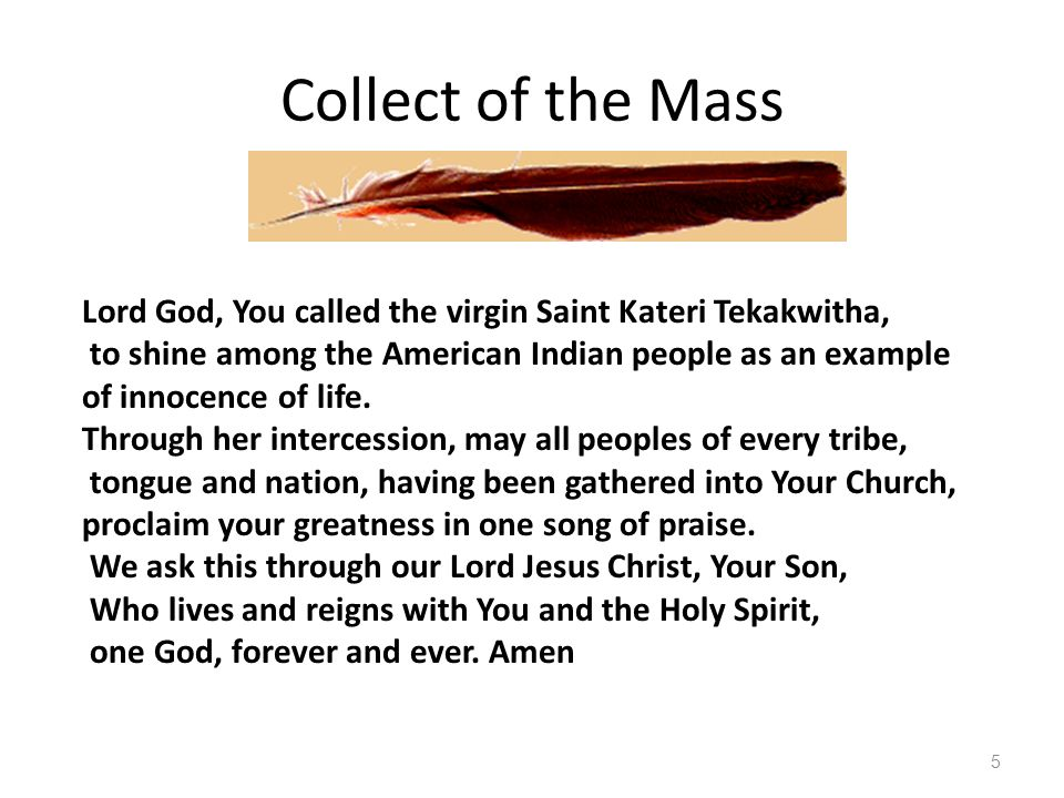 Collect of the Mass Lord God, You called the virgin Saint Kateri Tekakwitha, to shine among the American Indian people as an example.