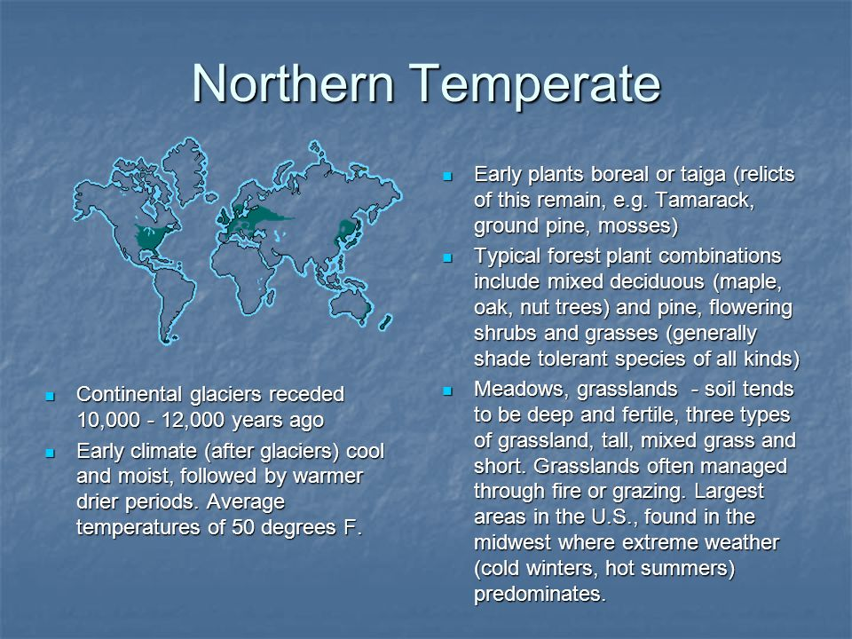 Northern Temperate Early plants boreal or taiga (relicts of this remain, e.g. Tamarack, ground pine, mosses)