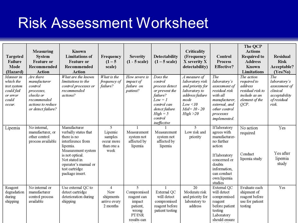risk analysis worksheet luann ochs ms senior vice president operations ppt 894