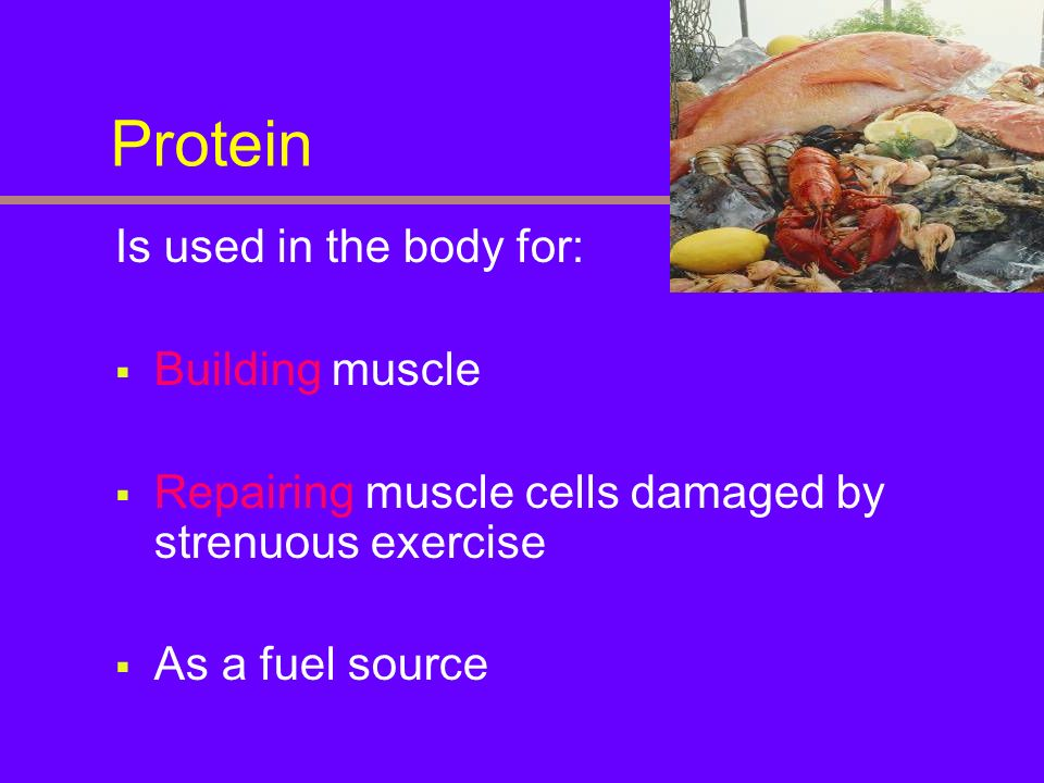 Protein Is used in the body for: Building muscle