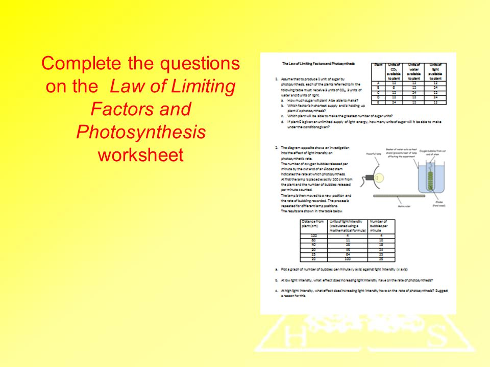 Limiting Factors Of Photosynthesis Objectives Ppt Video Online