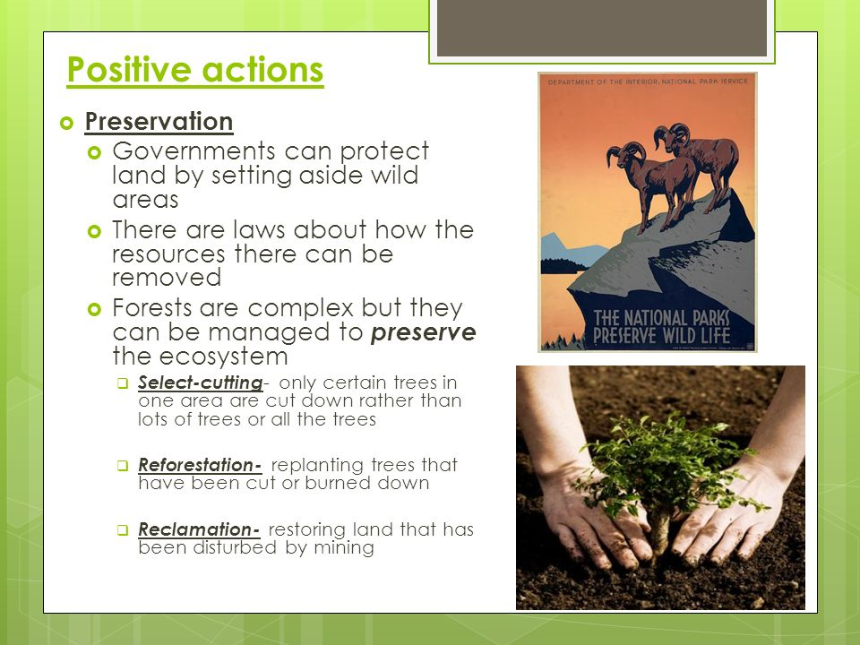 Positive actions Preservation
